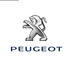 """Peugeot: """"Op cruisecontrol met Claranet"""""""