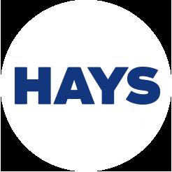 """Hays: """"Kwaliteit, betrouwbaarheid en snelheid"""""""